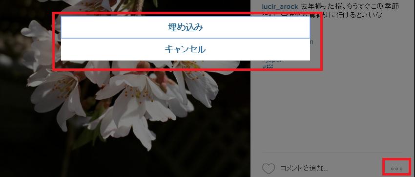 instagram_blog1