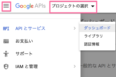 Google API3